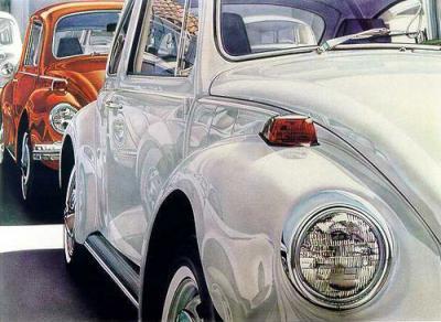 20080711091241-eddy-escarabajos.jpg