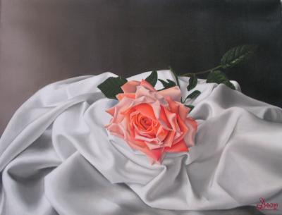 Rosa (II)